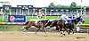 Papa's Forest winning at Delaware Park on 8/13/14