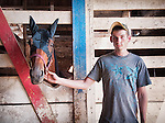 Man and horse in the barn at Montgomery County fairgrounds in Dayton Ohio