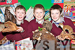 ANIMAL WORLD: Pupils from Kilconly National School in Ballybunion, checking out some of the stuffed animals on display at the school this week..L/r. Dara Costello,Patrick Dineen and Mark O'Donoghue.   Copyright Kerry's Eye 2008