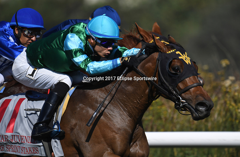 DEL MAR, CA - NOVEMBER 04: Elizabeth Darcy #11, ridden by Jose Ortiz down the stretch during the Qatar Juvenile Turf Sprint Stakes race on Day 2 of the 2017 Breeders' Cup World Championships at Del Mar Racing Club on November 4, 2017 in Del Mar, California. (Photo by Jamey Price/Eclipse Sportswire/Breeders Cup)
