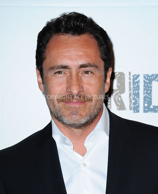 WWW.ACEPIXS.COM<br /> <br /> July 8 2013, LA<br /> <br /> Demian Bichir arriving at the series premiere of FX's 'The Bridge' at DGA Theater on July 8, 2013 in Los Angeles, California. <br /> <br /> By Line: Peter West/ACE Pictures<br /> <br /> <br /> ACE Pictures, Inc.<br /> tel: 646 769 0430<br /> Email: info@acepixs.com<br /> www.acepixs.com