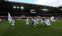 SWANSEA, WALES - FEBRUARY 21:  the Barclays Premier League match between Swansea City and Manchester United at Liberty Stadium on February 21, 2015 in Swansea, Wales.