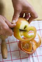"""Europe/France/Normandie/Basse-Normandie/14/Calvados/Pays d'Auge/Notre-Dame-de-Livaye: préparation de la tarte aux pommes normandes à la ferme table d'Hote """"Aux Pommiers de Livaye"""""""