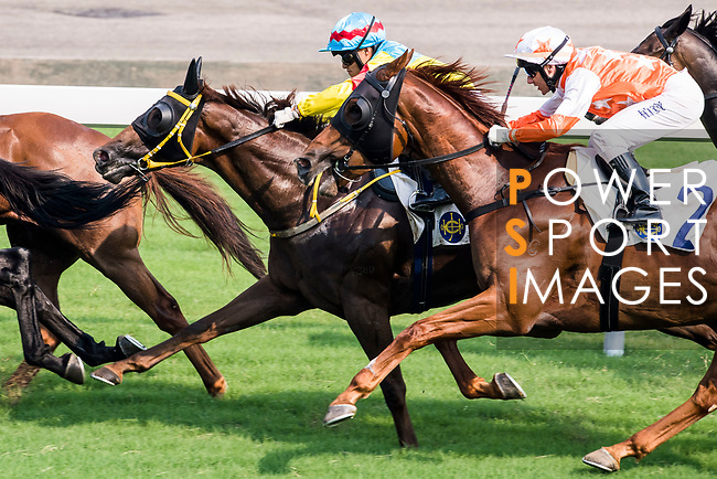 Horse Glenealy Prize #2 ridden by Brett Prebble (white/orange cap) competes during the race 6 of HKJC Horse Racing 2017-18 at the Sha Tin Racecourse on 16 September 2017 in Hong Kong, China. Photo by Victor Fraile / Power Sport Images