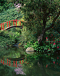Seattle, WA<br /> Arched red foot bridge and reflecting pond in spring, Kubota Japanese Gardens