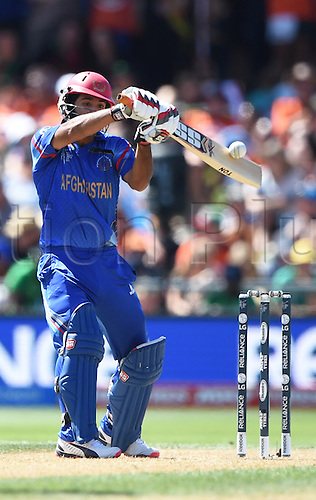 08.03.2015. Napier, New Zealand.  Najibullah Zadran batting during the ICC Cricket World Cup match between New Zealand and Afghanistan at McLean Park in Napier, New Zealand. Sunday 8 March 2015.