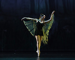 """Tales of An Athenian Forest"" Cary Ballet Company's 16th Annual Spring Gala, Saturday 2 PM Performance, 16 March 2013, Cary Arts Center."