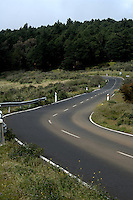 Winding road leading to forest in El Hierro, Canary Islands.