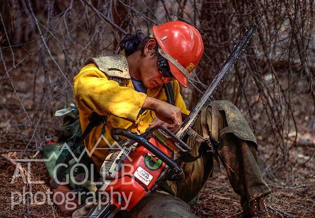 August 15, 1990 Yosemite National Park  --  A-Rock (Arch Rock) Fire  -- Mendocino Hotshot Diego Mendiola works on his saw during break from cutting line. The Arch Rock Fire burned over 16,000 acres of Yosemite National Park and the Stanislaus National Forest.  At the same time across the Merced River, the Steamboat Fire burned over 5,000 acres of both Yosemite National Park and the Sierra National Forest.