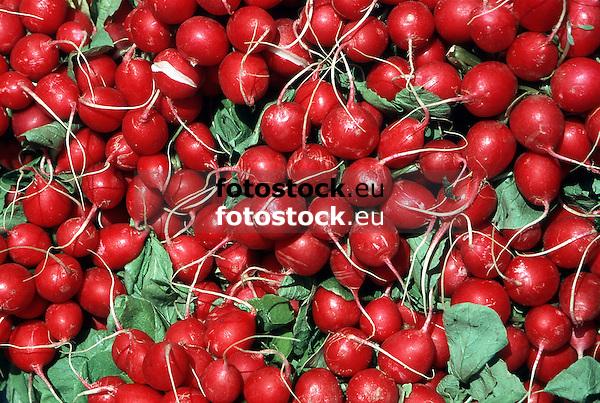 hot red radishes displayed at a food stall at the farmer's market<br /> <br /> rabanitos rojos en el mercado<br /> <br /> rote Radieschen auf einem Stand auf dem Wochenmarkt<br /> <br /> original: 35 mm slide transparency