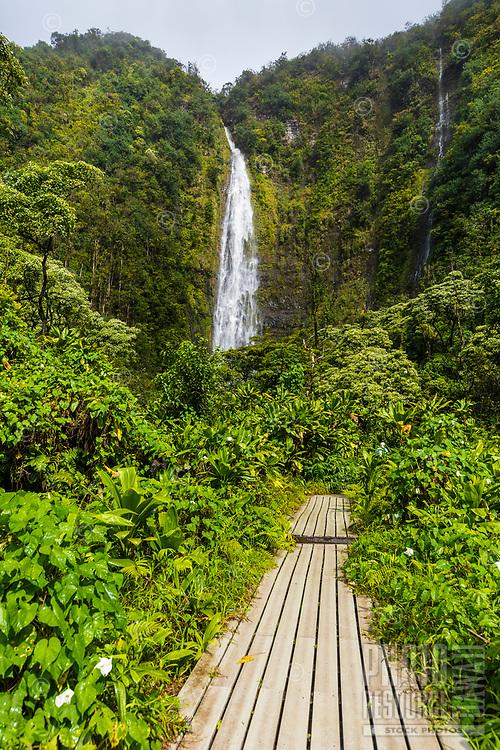 Makahiku Falls, Pipiwai Trail, Haleakala National Park, Maui.