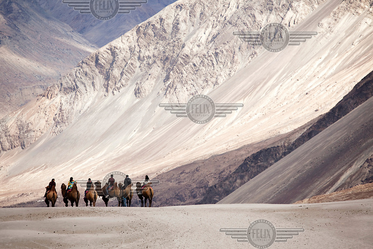 Indian tourists ride on bactarian camels in the Nubra Valley near Hundar. The Himalayas, in particular the Ladakh region, is growing increasingly popular with India's newly emergent middle and affluent classes.