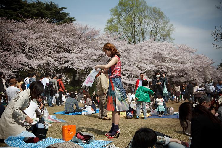Tokyo, April 10 2011 - Hanami in Shinjuku park.