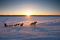 Bruce Linton runs up the bank of the Yukon River at sunrise and into the village checkpoint of Kaltag during the 2010 Iditarod