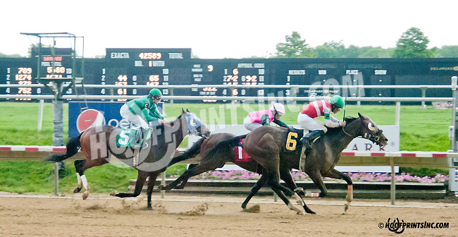 Master of Humor winning at Delaware Park on 6/17/13
