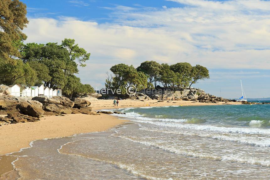 France, Vendée (85), île de Noirmoutier, Noirmoutier-en-l'Île, le bord de mer au Bois de la Chaise // France, Vendee, Island of Noirmoutier, Noirmoutier en lIle, the seaside at the Bois de la Chaise