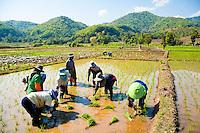 Thailand - Chiang Rai