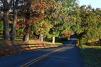 Fall colors cover a long winding road in Crozet, Va. Photo/Andrew Shurtleff
