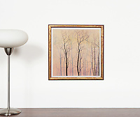"""Artist:<br /> In House Rentals: Contemporary<br /> Reference #<br /> 1321_160dp<br /> Title<br /> Preston: Trees At Dawn<br /> Image Dims.<br /> 17.75"""" x 17.5"""" <br /> Framed Dims.<br /> 20"""" x 20"""" <br /> Medium<br /> Digital Print <br /> Price<br /> Available upon request"""