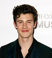 LOS ANGELES, CA - FEBRUARY 08: Shawn Mendes at the MusiCares Person of the Year Tribute held at Los Angeles Convention Center, West Hall on February 8, 2019 in Los Angeles, California. <br /> CAP/MPI/IS/CSH<br /> &copy;CSHIS/MPI/Capital Pictures