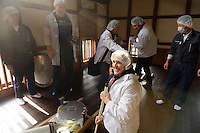 Tour participant stirring a tank of sake (under the floor). Marumoto Sake Brewery, Asakuchi city, Okayama Pref, Japan, January 28, 2014. Okayama is famous for its earthy full-bodied sake. In January and February 2014 a 5-day tour of breweries in the prefecture was organised by Sake Brewery Tours (www.saketours.com).