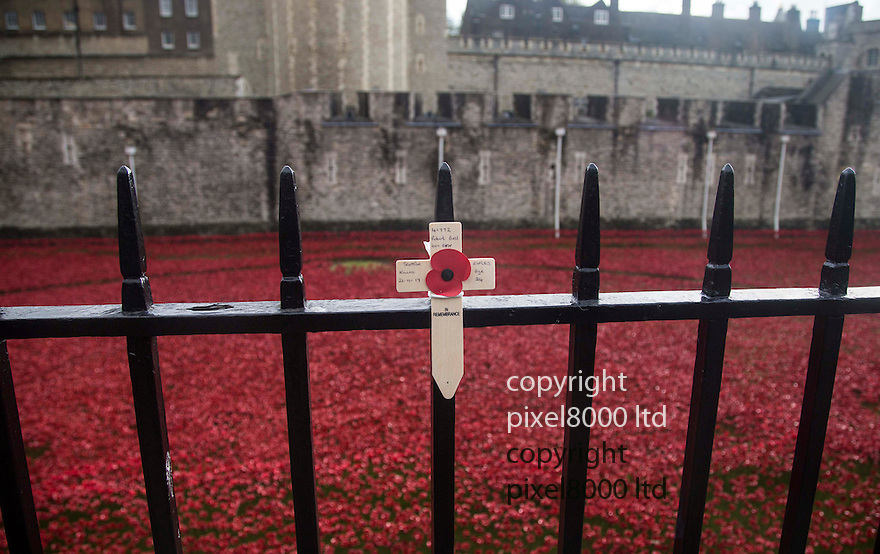Pic shows: Huge crowds again today at the Blood Swept Lands and Seas of Red<br /> Poppy installation at the Tower of London with just days to  go before it is due to be removed<br /> <br /> Personal tributes left.<br /> <br /> <br /> <br /> <br /> <br /> <br /> Pic by Gavin Rodgers/Pixel 8000 Ltd
