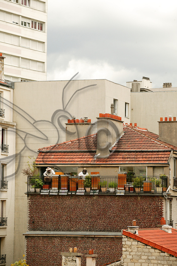 In Paris, the Malvezins observe <br /> a shallow frame <br /> on their Parisian balcony. <br /> Equipped with veiled hats <br /> and smoker in hand, <br /> these bee lovers <br /> pursue their passion <br /> and give the city <br /> a breath of country air.