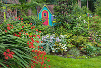 Vashon-Maury Island, WA: Colorful playhouse in woodland perennial garden with crocosmia 'Lucifer, ' hostas and ferns