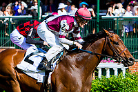 LOUISVILLE, KY - MAY 06: Divisidero with Julien Leparoux win the Woodford Reserve Turf Classic on Kentucky Derby Day at Churchill Downs on May 6, 2017 in Louisville, Kentucky. (Photo by Sue Kawczynski/Eclipse Sportswire/Getty Images)
