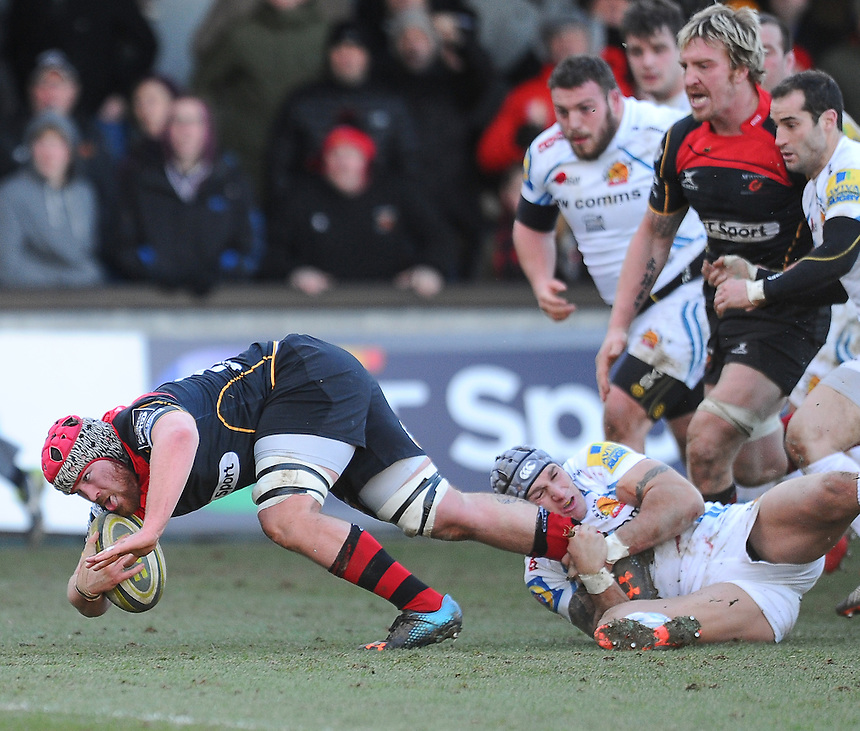 Newport Gwent Dragons' Scott Matthews charges for the line<br /> <br /> Photographer Craig Thomas/CameraSport<br /> <br /> Rugby Union - European Rugby Challenge Cup Pool 3 - Newport Gwent Dragons v Exeter Chiefs - Sunday 1st February  2015 - Rodney Parade - Newport <br /> <br /> &copy; CameraSport - 43 Linden Ave. Countesthorpe. Leicester. England. LE8 5PG - Tel: +44 (0) 116 277 4147 - admin@camerasport.com - www.camerasport.com