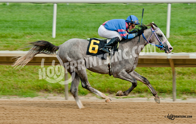 Burning Ghost winning at Delaware Park on 6/26/13