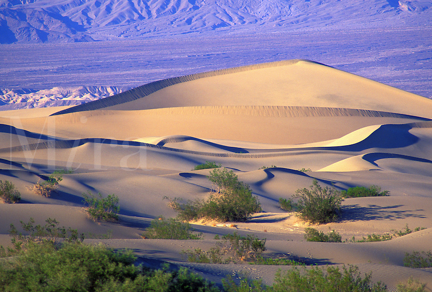sand dunes in Death Valley National Park California