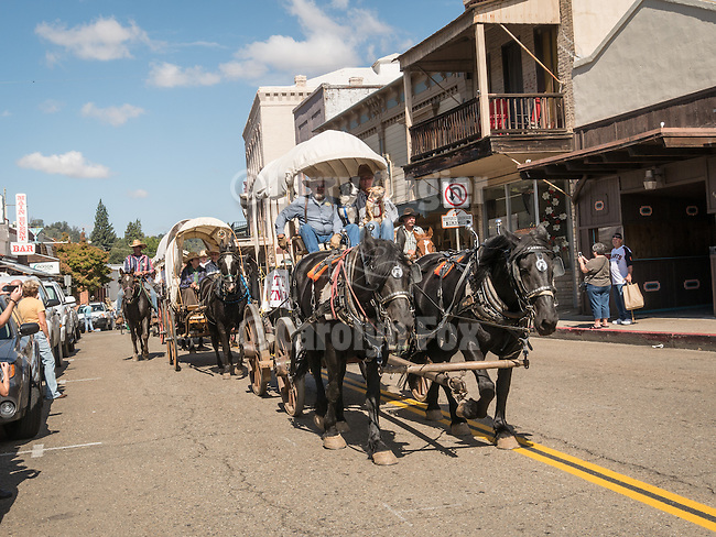 Days of '49 wagon train travels downtown Jackson Calif.<br /> <br /> Diamond Jubilee commemoration of the founding of Amador County in 1854