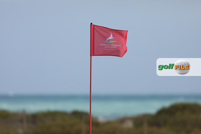 Pinflag on the16th during the second round of the Fatima Bint Mubarak Ladies Open played at Saadiyat Beach Golf Club, Abu Dhabi, UAE. 11/01/2019<br /> Picture: Golffile | Phil Inglis<br /> <br /> All photo usage must carry mandatory copyright credit (© Golffile | Phil Inglis)
