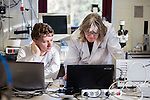 Laboratory research for the production of insects for human consumption, Holland