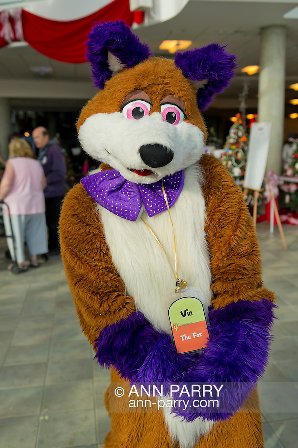 Garden City, New York, USA. December 1, 2013. VIN the FOX, an orange and purple fursuit character, is at the Winter holiday event Festival of Trees, held at Cradle of Aviation Museum during Thanksgiving weekend, with proceeds benefiting United Cerebral Palsy Association of Nassau County, Long Island.