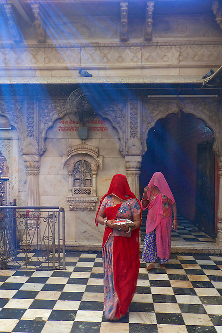 Karni Mata Temple , Deshnoke Rajasthan. The most intriguing aspect of the temple is the 20,000-odd rats that call this temple ... It was completed in its current form in the early 20th century in the late Mughal style by Maharaja Ganga Singh of Bikaner.<br />