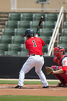 Eddy Alvarez (1) of the Kannapolis Intimidators at bat against the Lakewood BlueClaws at CMC-Northeast Stadium on May 17, 2015 in Kannapolis, North Carolina.  The Intimidators defeated the BlueClaws 4-1.  (Brian Westerholt/Four Seam Images)