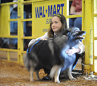 STAFF PHOTO ANDY SHUPE - Shelby Mae White, 11, of Goshen holds her dog, Hooper, as they wait to participate in the annual Youth Dog Show Saturday, Aug. 30, 2014, at the Washington County Fair in Fayetteville. The fair concluded Saturday.