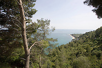 Una veduta della costa del Gargano, in Puglia.<br /> A view of the Gargano's coast, with pine trees, in Puglia.<br /> UPDATE IMAGES PRESS/Riccardo De Luca