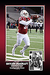 Memorabilia print for Skyler Cracraft from the 2015 Washington State football season in which the Cougs went 9-4, including a Sun Bowl victory over the Miami Hurricanes.