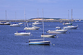 Wellfleet Harbor, Cape Cod, Massachusetts, USA