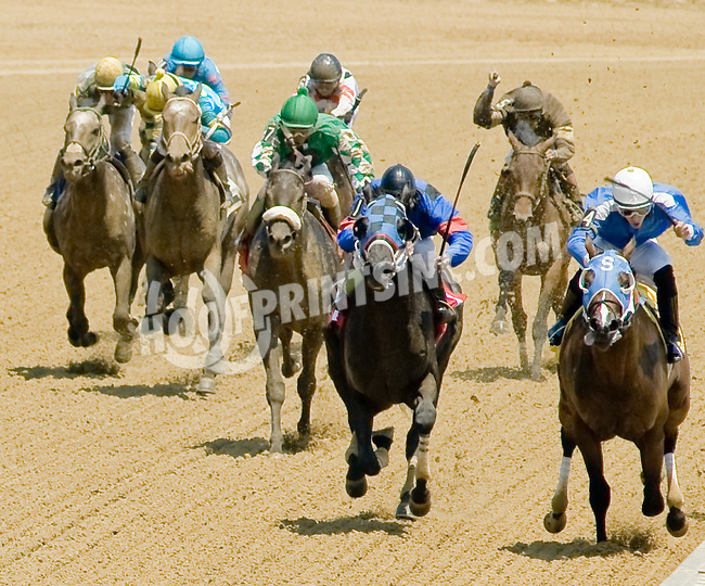 Runnin From Love winning at Delaware Park on 7/4/12