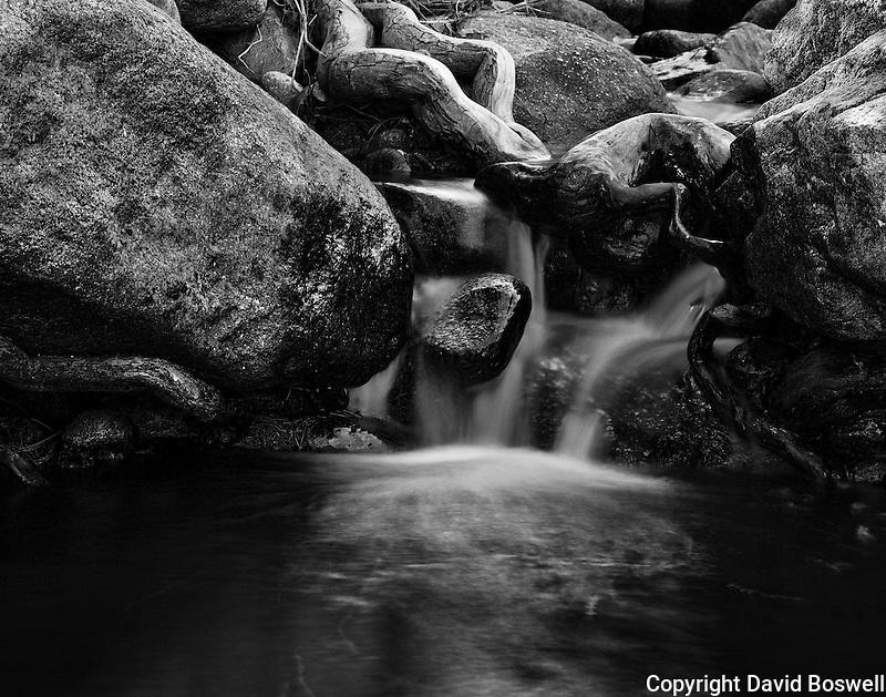 A desert stream in Catalina State Park, in Tucson, Arizona