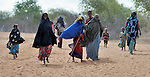 Families trek across eastern Kenya near the Somali border. They fled their homes in Somalia because of drought and war and are heading for the Dadaab refugee complex. Already the world's world's largest refugee settlement, Dadaab has swelled in recent weeks with tens of thousands of recent arrivals from Somalia.