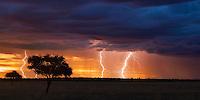 Thunder storm with lightning bolts at sunset over Kalahari pan