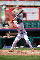 Reading Fightin Phils shortstop Malquin Canelo (6) at bat during a game against the Erie SeaWolves on May 18, 2017 at UPMC Park in Erie, Pennsylvania.  Reading defeated Erie 8-3.  (Mike Janes/Four Seam Images)