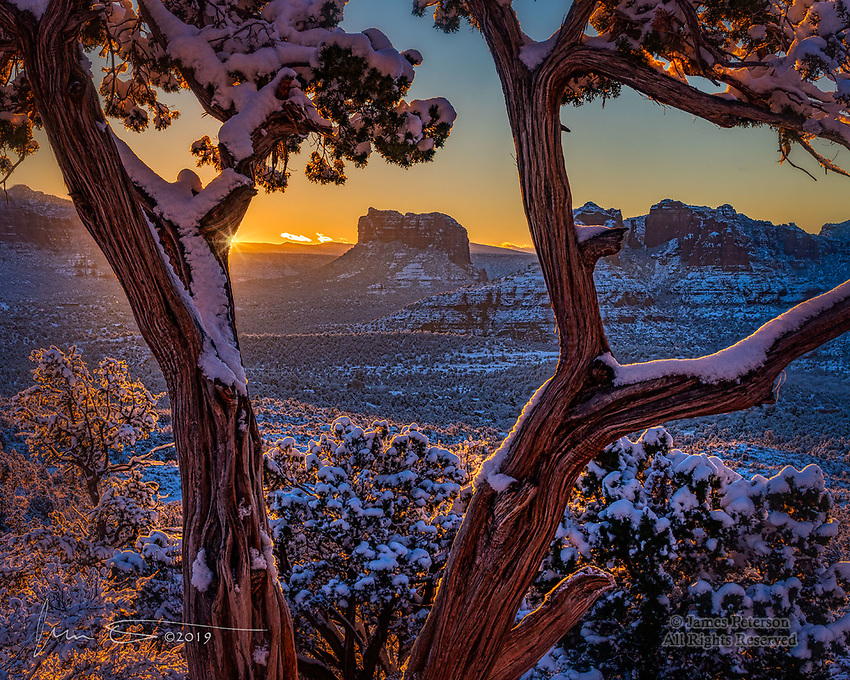 Sedona New Year Sunrise ©2019 James D Peterson.  This is lIterally the dawn of a new year (2019) in Sedona, Arizona, as seen through one of our more picturesque juniper trees.  Courthouse Butte and Cathedral Rock are seen in the background.