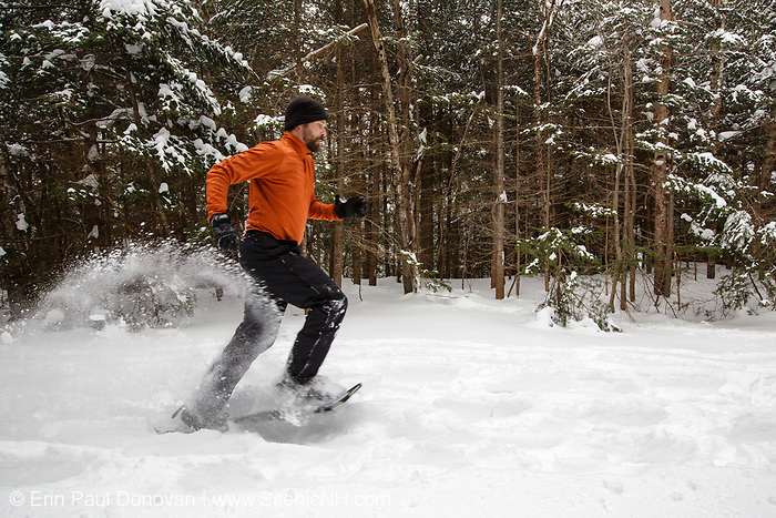 Man snowshoeing in the White Mountain National Forest of New Hampshire USA after a dusting of snow