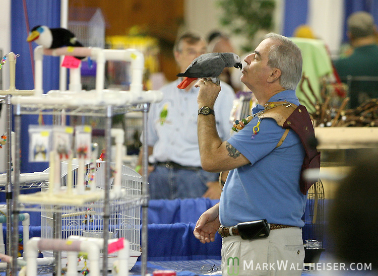 One of the vendors gets up close and personal with one of his birds at the 18th Annual Exotic Bird Fair and Festival sponsored by the Big Bend Bird Club at the North Florida Fairgrounds  August 25, 2007.  (Mark Wallheiser/TallahasseeStock.com)